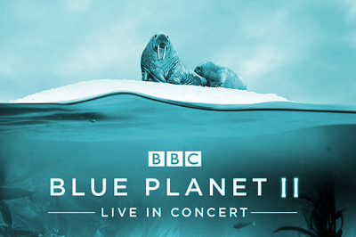 blue-planet-hydro-glasgow-tickets Blue Planet II Live In Concert
